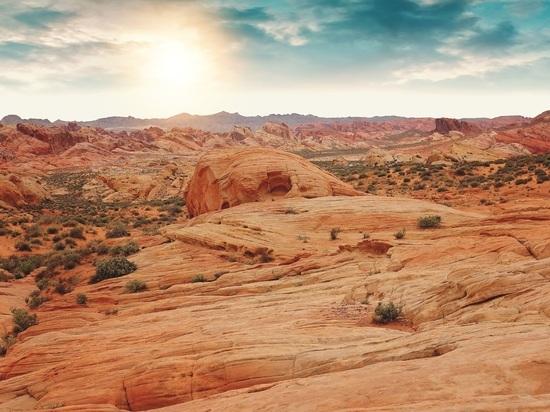 В самой сухой пустыне Земли обнаружены «марсианские» бактерии