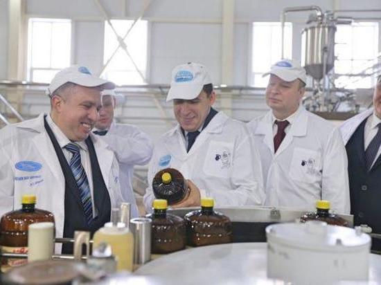 Губернатору презентовали новые важные для Кушвы объекты
