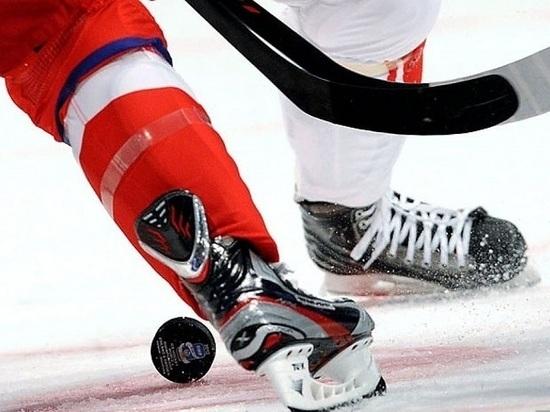 Мастер-класс тамбовским хоккеистам покажут тренеры юниорской сборной России