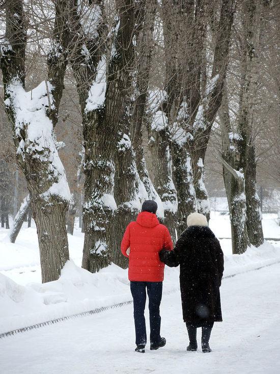 Эксперт рассказал о влиянии снега на московские растения: «Деревьям приятно»