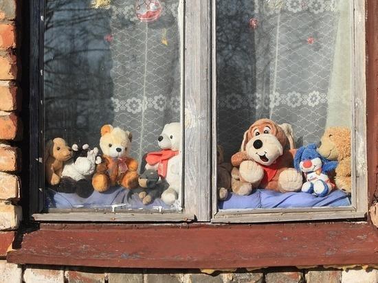 Петрозаводчане вызвали спасателей из-за бомбежки игрушками