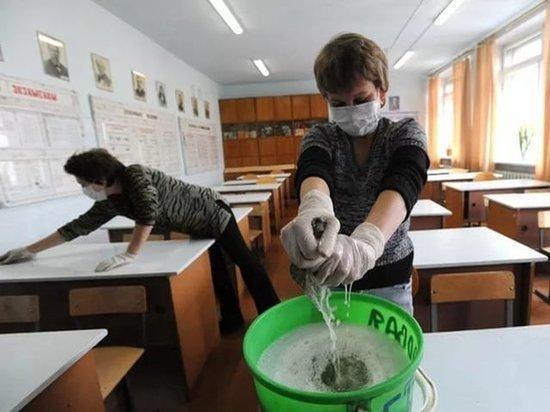 Обработку от вирусов проведут во всех школах Костромской области