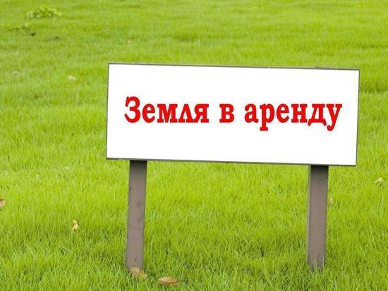 Оренбургское УФАС выявило нарушения в правилах продажи государственной земли в Асекеево