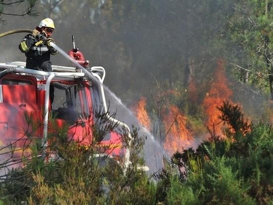 Финансирование борьбы с лесными пожарами в Архангельской области увеличено на 15 процентов