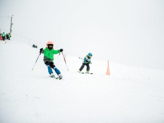 В Тамбове прошли областные соревнования по горным лыжам и сноуборду