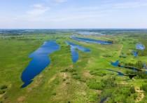 Крупнейшее в мире Васюганское болото стало заповедником