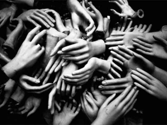 Под Хабаровском нашли пакет с 52 отрубленными человеческими кистями рук