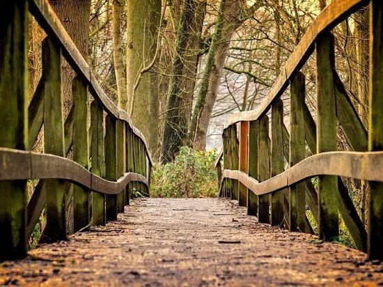 Липчане отговорили юношу прыгать с моста