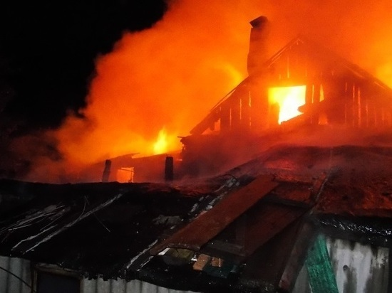 В Татарстане пожарные эвакуировали из горящего дома женщину, ее сын погиб в огне
