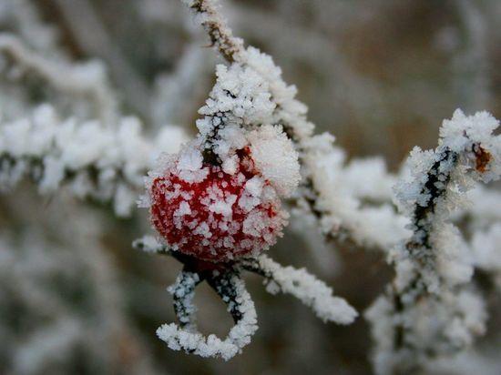 В Оренбуржье температура воздуха понизится на 10° и более
