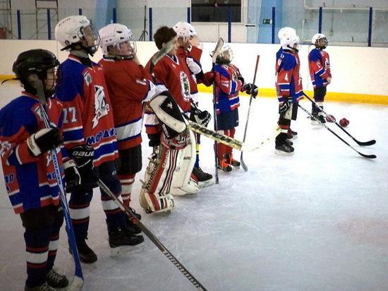 В Рузаевке юные хоккеисты разыграли призы турнира «Золотая шайба»