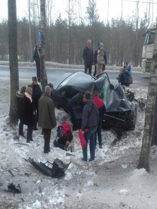 Жуткая авария с участием пожилого водителя произошла под Петербургом