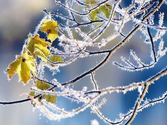 11 марта в Мордовии ожидается понижение температуры воздуха до минус 25