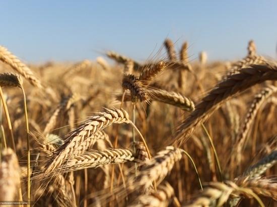Тверские фермеры и сельхозпроизводители уехали в Краснодар