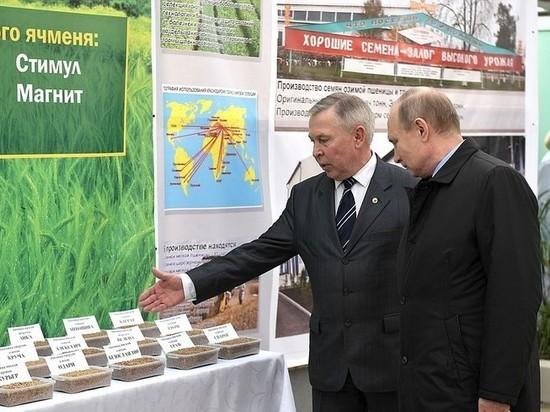 Путину в Краснодаре подали мисочку конопли