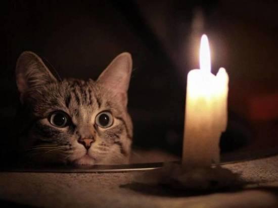 Без света, воды и тепла будет сидеть сегодня часть жителей Архангельска