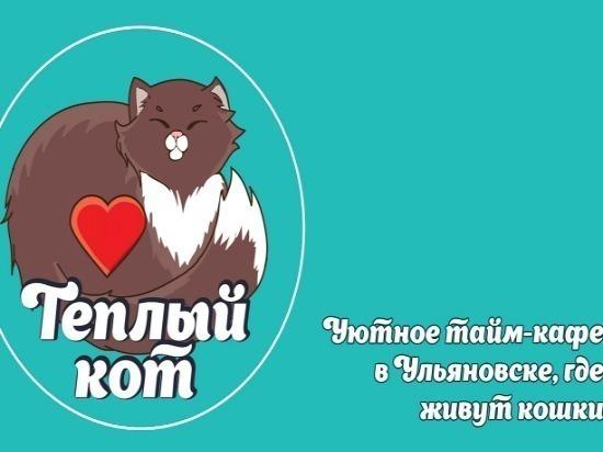 В Ульяновске откроется первое котокафе