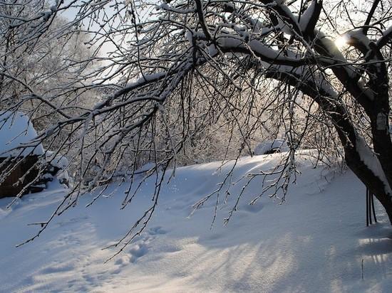 От +4 до -23: Тверская область переживает весеннее обострение