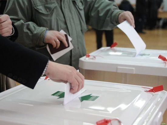 На избирательных участках тамбовчанам будут дарить подарки