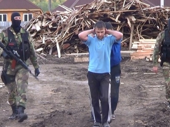 В Усолье-Сибирском лес вырубают прямо в черте города