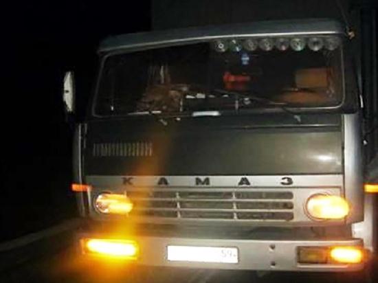 В Омской области КамАЗ наехал на лежавшего на дороге человека