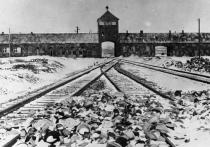 Польский «закон о холокосте» обернулся международным скандалом: кто виноват