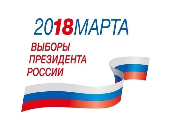 Как в Челябинской области проходили выборы президента России