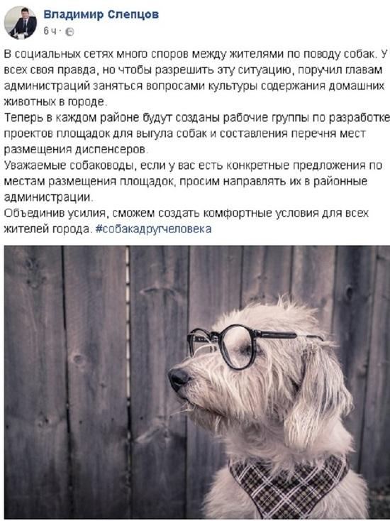В Ярославле собаководов изгоняют с городских улиц и парков