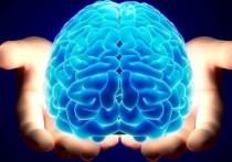 Что движет человеческими желаниями? Ответ на этот вопрос на протяжении столетий ищут величайшие умы аналитической психологии