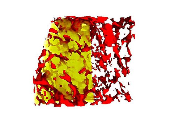 Нейтронная томография раскрыла всю подноготную метеорита Сеймчан