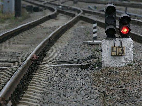 Грузовой поезд насмерть сбил мужчину в Тамбовской области