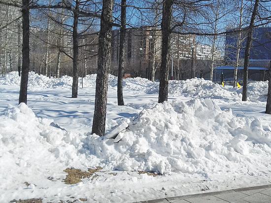 Из парка на юго-востоке Москвы пропала уникальная скамейка