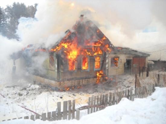 В Подмосковье при пожаре заживо сгорели мать и дочь