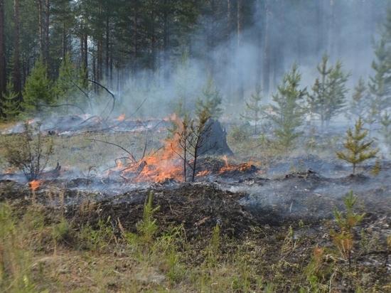 В районах Забайкалья не хватает источников воды для тушения лесных пожаров