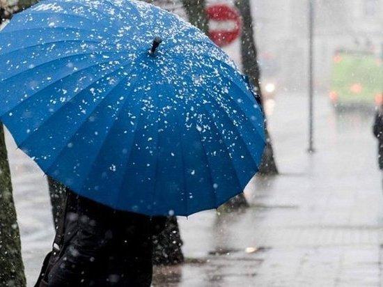 Дождь и порывистый ветер предсказали синоптики в Костромской области