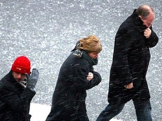 Архангельские синоптики наколдовали мощный ночной снегопад и сильный ветер днём