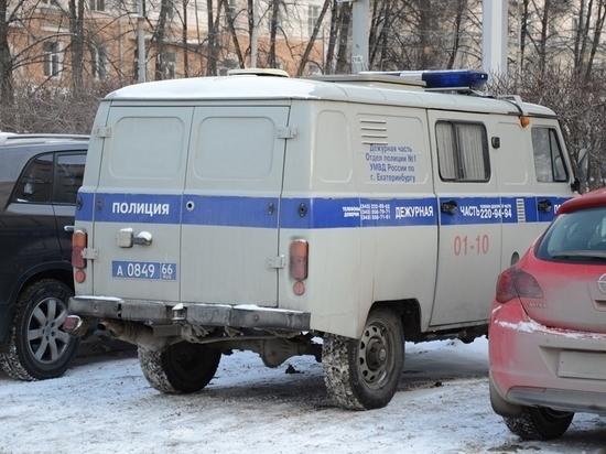 Екатеринбуржецу, который выбросил своего кота с 13-го этажа, вынесен приговор