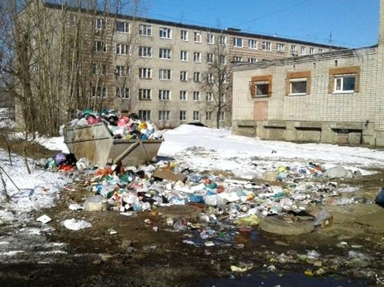 Костромичи пожаловались на свалки в ОНФ