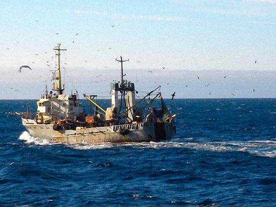 Росрыболовство будет бороться с украинским пиратством в Азовском море
