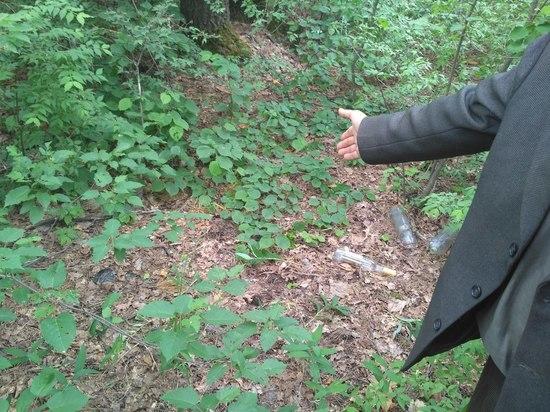 Тамбовчанина, который насиловал женщин в лесу, осудили на 6,5 лет