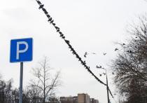Автомобили москвичей «закопают» в землю