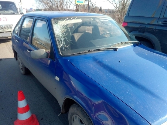 В Тамбовской области водитель автомобиля