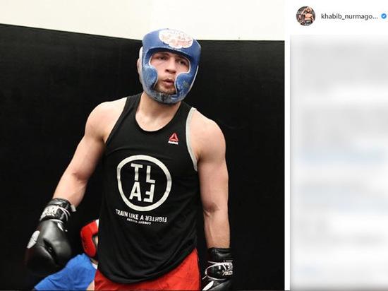 Нурмагомедов ответил на нападение Макгрегора: мне смешно