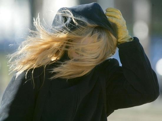 Сильный ветер ждут в Костроме к Пасхе