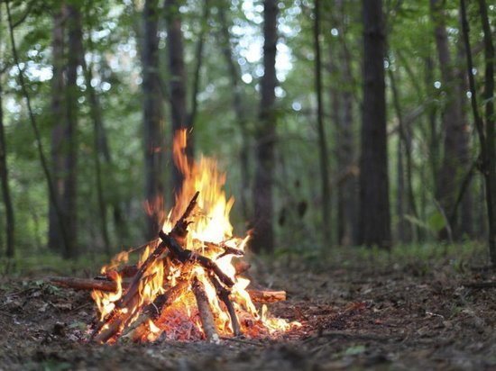 В Самаре запретят разжигать костры