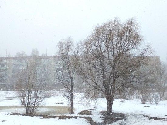 Снег и сильный ветер обрушились на Костромскую область
