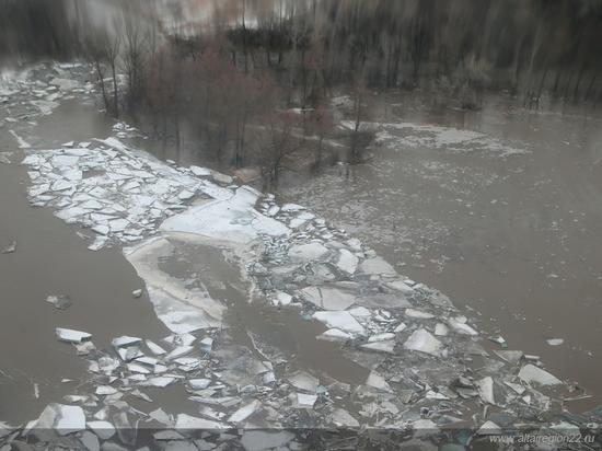 Алтайские спасатели пытаются опередить паводок