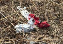 Родственница одной из погибших в авиакатастрофе самолета «Саратовских авиалиний» в Подмосковье записала видеообращение к президенту