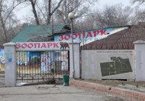 Иркутская  зоогалерея пытается  выстоять под судебным давлением