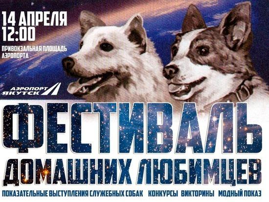 Аэропорт «Якутск» проведет фестиваль домашних любимцев